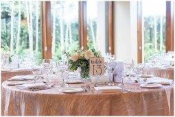 Mariea-Rummel-Photography-Sacramento-Real-Weddings-Magazine-Demi-Josh_0015