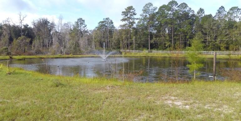 shaked fish pond (Medium)