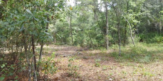 16.9 acres North Gainesville, FL