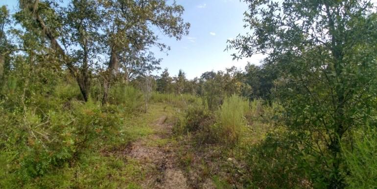 J Edwards open trail
