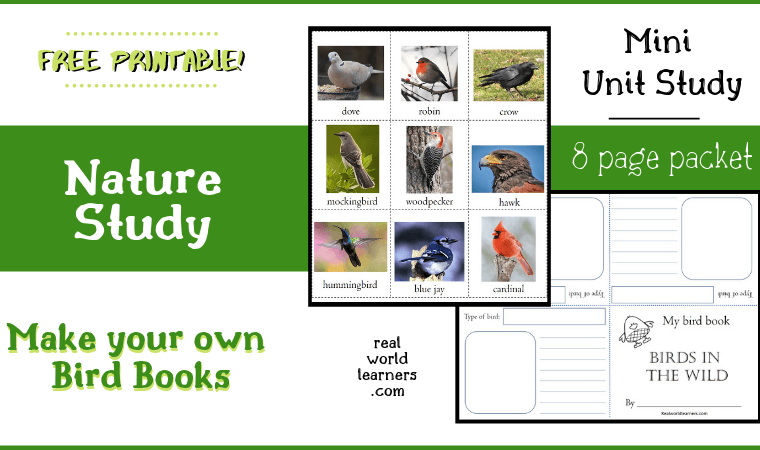 Nature study free printable Bird Book - enjoy learning about birds with this notebooking activity using bird cards and mini-book templates.