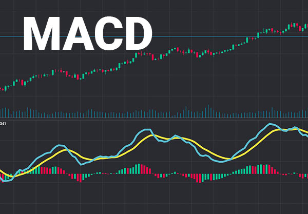 Automated MACD Trading With TradingView and Autoview – Real
