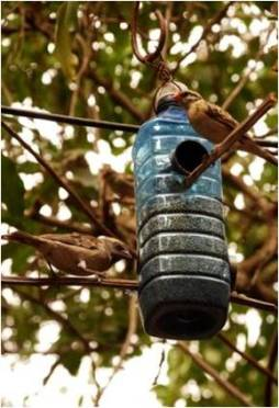 Creatively cut bottles have many uses such as for this bird feeder at a tourist site