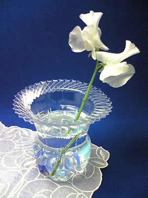 Plastic bottle vase made from plastic bottle