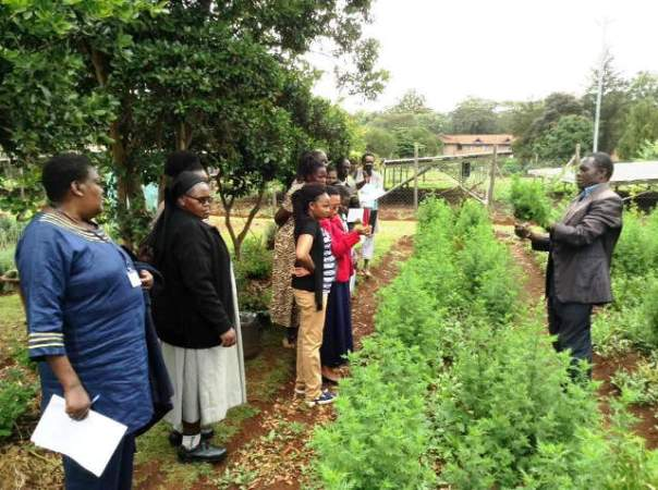 George teaching on planting artemisia at Natural Medicines Seminar in November 2018