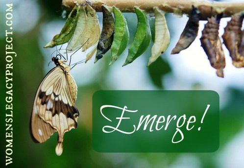 butterfly and cocoons image with the word emerge