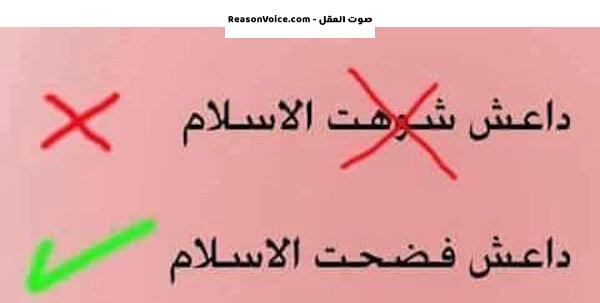 داعش فضحت الإسلام ولم تشوهه