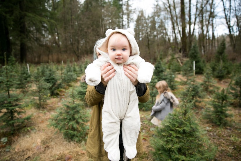 christmas tree farm-rebbi anderson-29