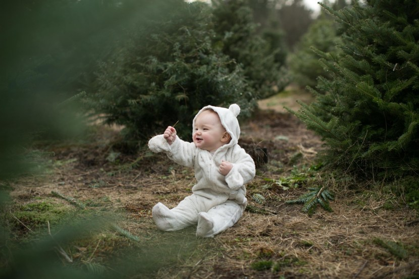 christmas tree farm-rebbi anderson-51