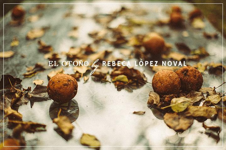 El otoño, la estación más fotogénica
