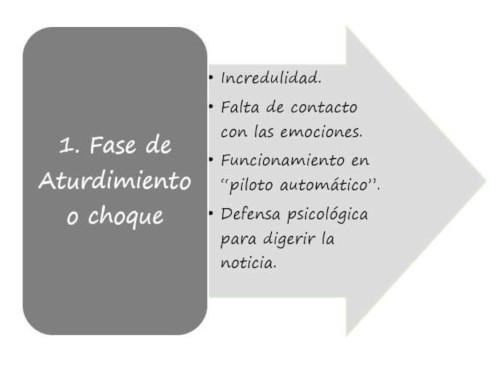 Fase 1 del duelo. rebecatorrijos.com