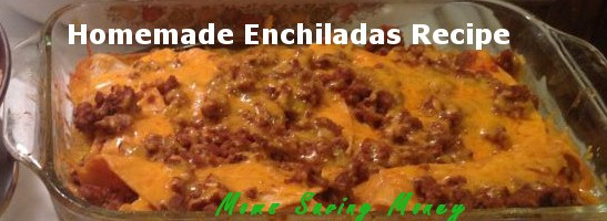 Homemade Enchiladas (Moms Saving Money Style)