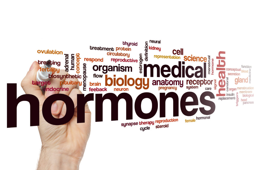 Your Guide to Hormone Testing