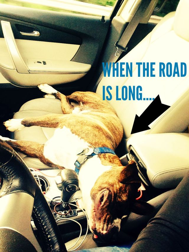 WHEN THE ROAD IS LONG..