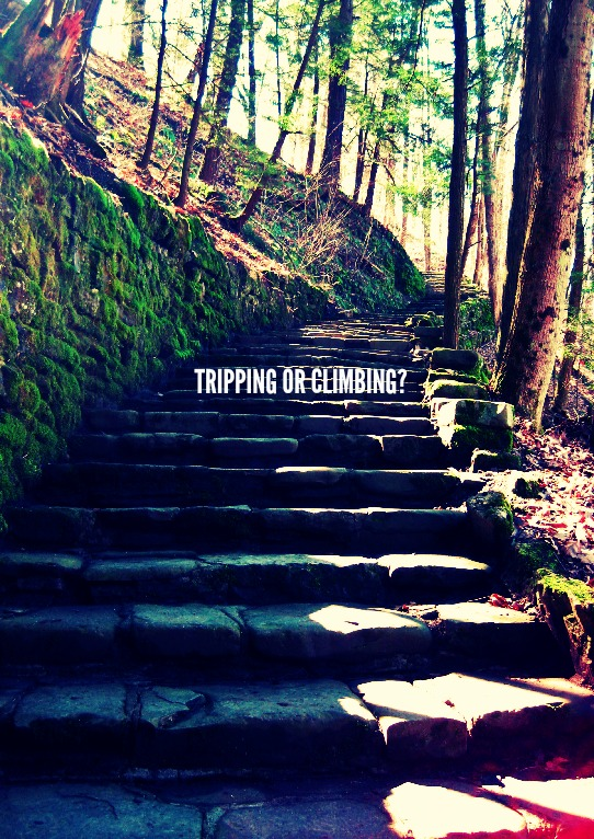 TRIPPING OR CLIMBING?