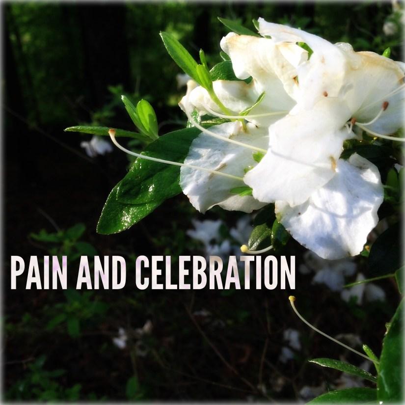 PAIN AND CELEBRATION