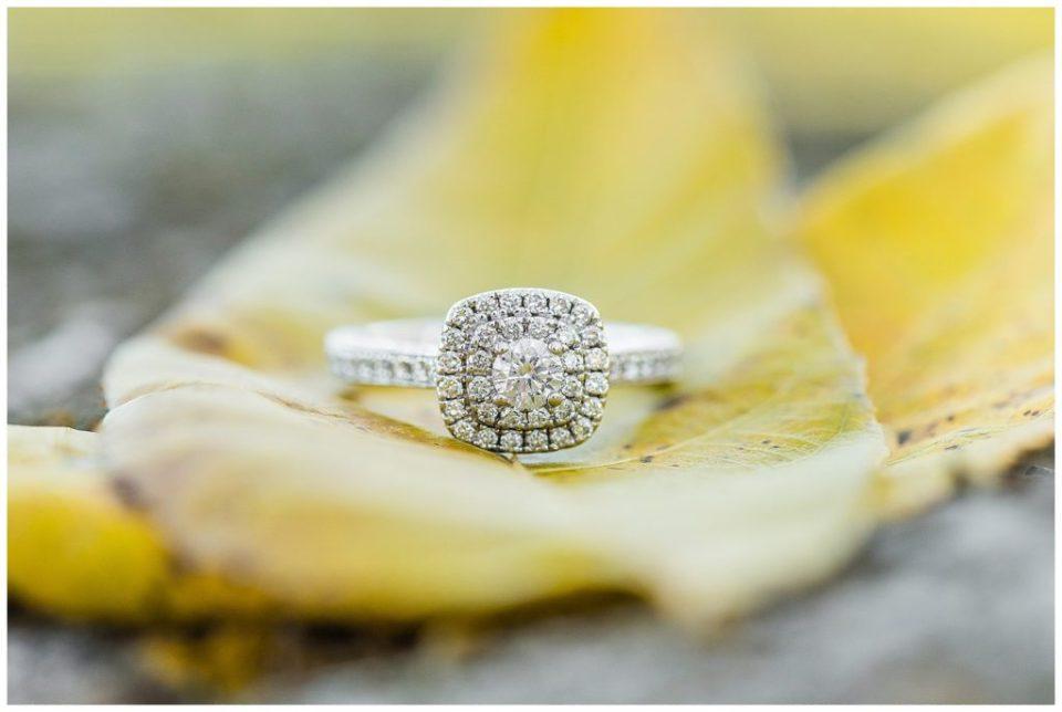 Fall engagement. Diamond ring.
