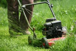 Do You Mow the Lawn or Cut the Grass?