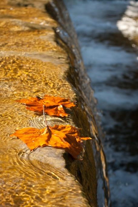 Taughannock Falls-2-2