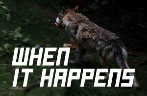 "Header Image for ""When It Happens"" by Rebecca Jones-Howe"