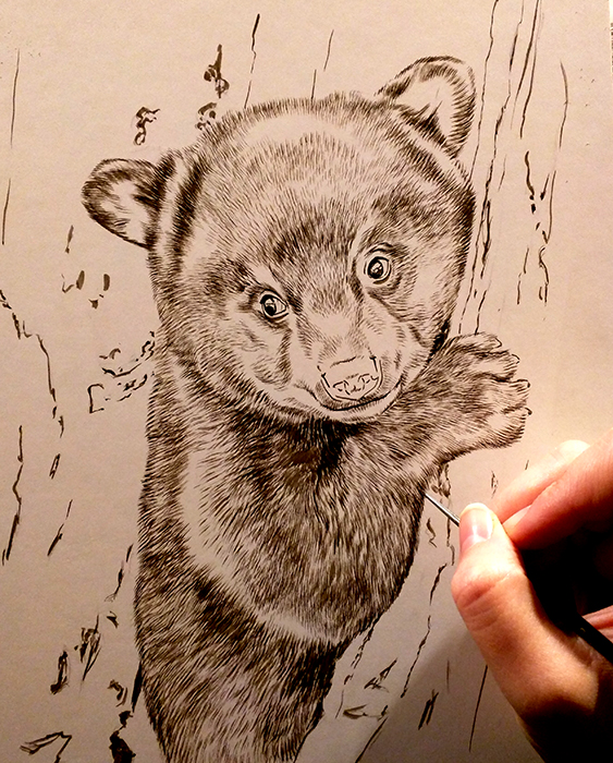 Peek In The Studio – New Year New Sepias: Wolf, Bear, & Raccoon