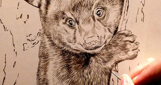 Peek In The Studio – New Year New Sepias: Wolf, Bear, & Raccoon
