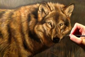 Wolf watercolor work in progress Rebecca Latham