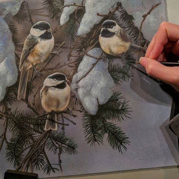 "Winter Chickadees, Work in Progress, Watercolor, 10""x10"", Rebecca Latham"