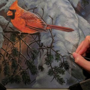 "Winter Cardinal, Work in Progress, Watercolor, 10""x10"", Rebecca Latham"