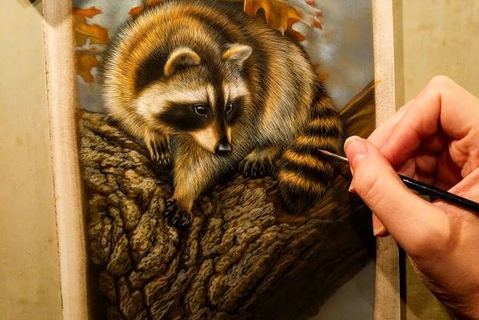 "Raccoon, Work in Progress, Watercolor, 6""x8"", Rebecca Latham"