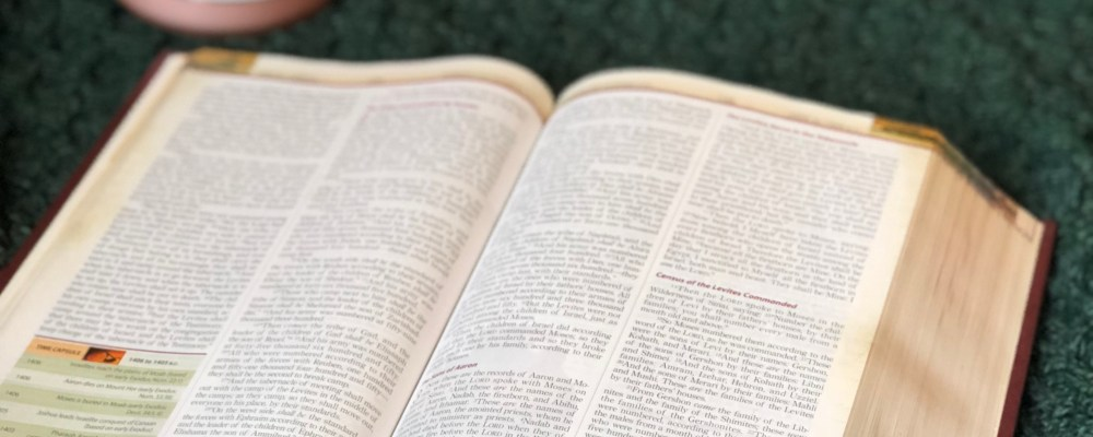 Why Study the Scriptures?
