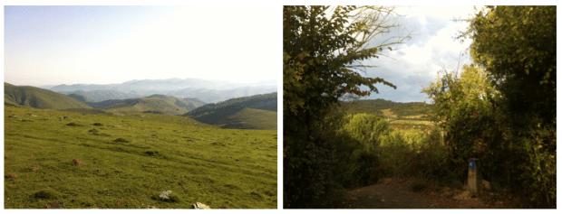 CaminoScenery