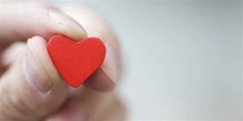 11532-hand-heart-landsc-1200w-tn
