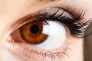 brown_eye