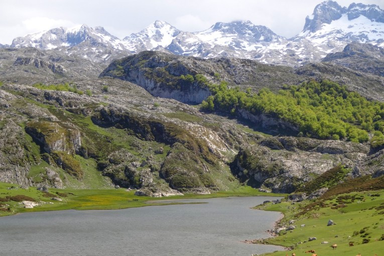 Covadonga Lakes Lago Ercina and Picos