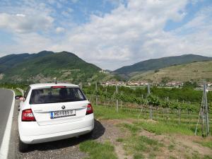 Wachau drive