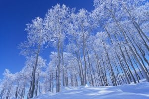 Perfect Packing List for First-Time Snowbirds