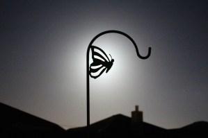 Moonlight Silhouette 2