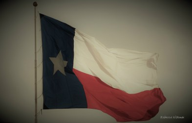Lone Star Old