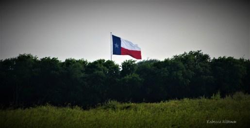 Texas Flag Distance