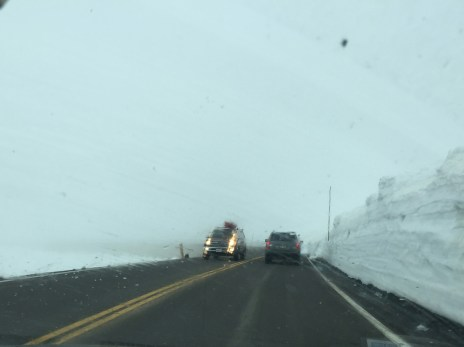 Through the windshield, but visibility was actually this bad.