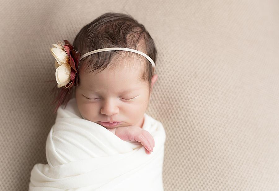 St. Louis Newborn Photographer