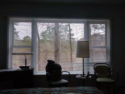 And the view. I picked this room for all the windows. Only leaves on the trees would have made it better.