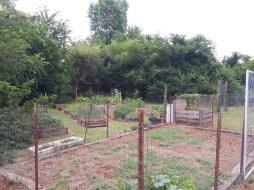 A very spacious garden!