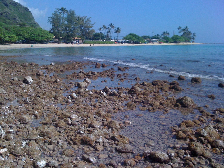 Beach at Kaaawa