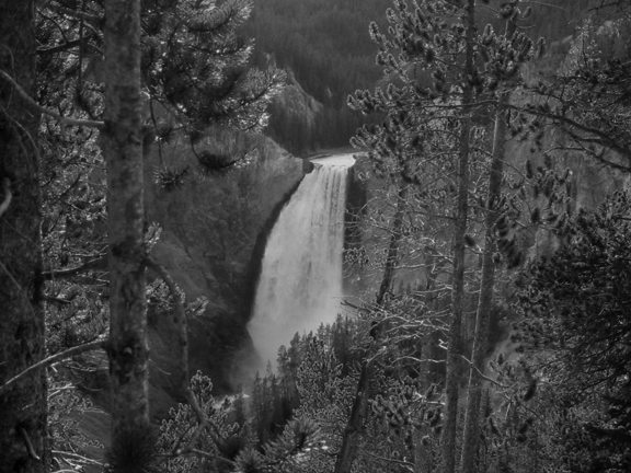 Lower Falls at Yellowstone