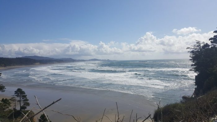 Fall in Love with Highway 101 Oregon Coast