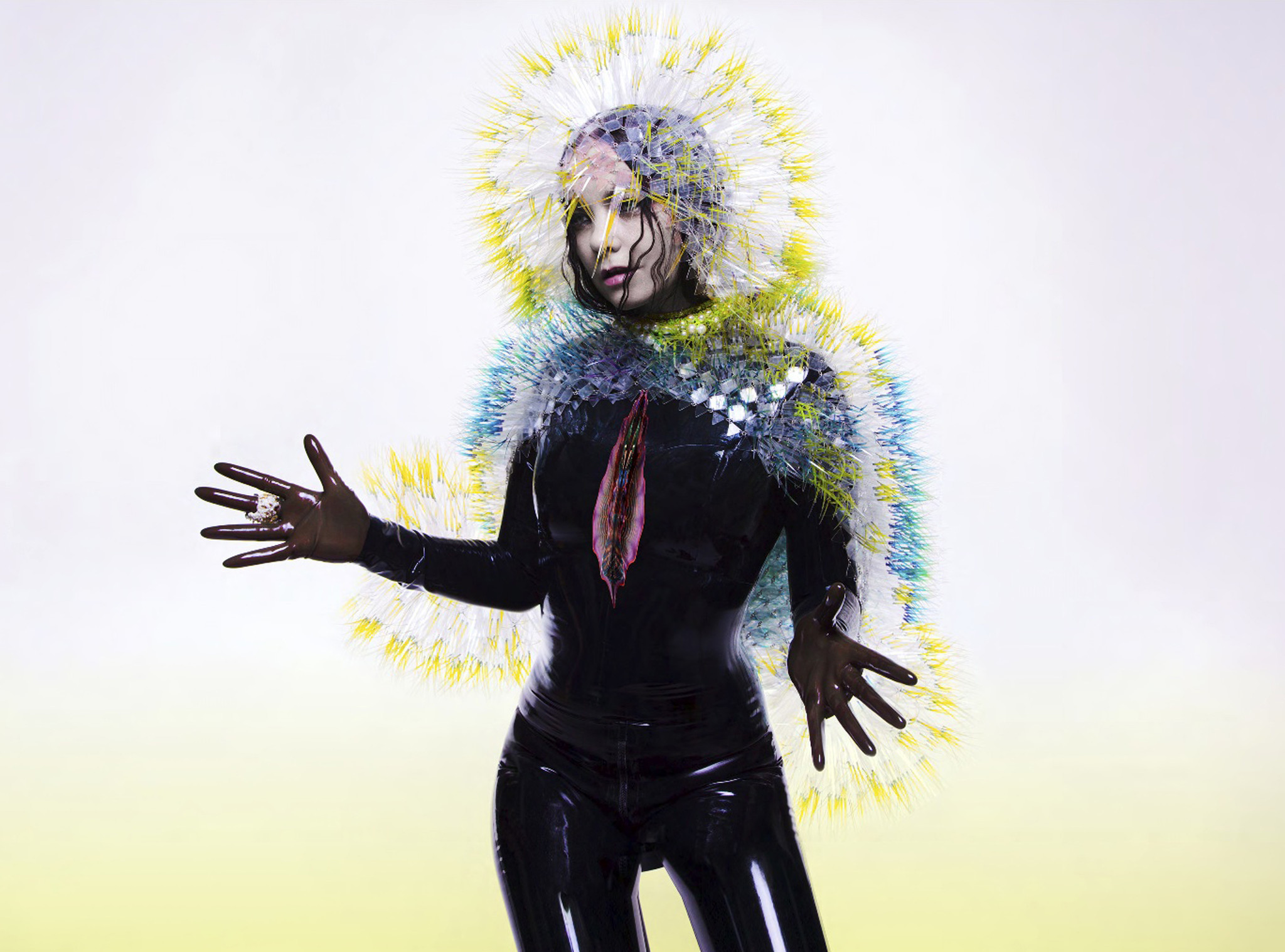 CD Review: Vulnicura by Bjork