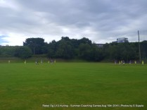 Rebel Og U13 Hurling Aug 10th 2016 (11)