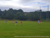Rebel Og U13 Hurling Aug 10th 2016 (44)